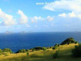 12 Caribbean Dream Lots