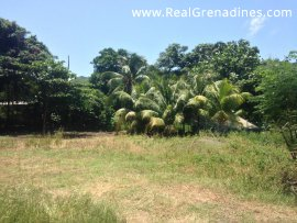 Flat Commercial Lots